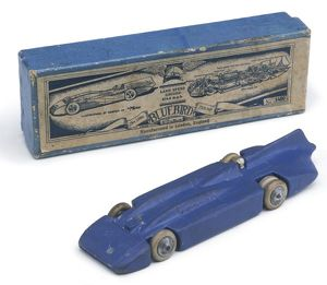 TIN MODEL OF A BLUEBIRD