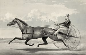 The trotting mare Goldsmith Maid driven by Budd Doble
